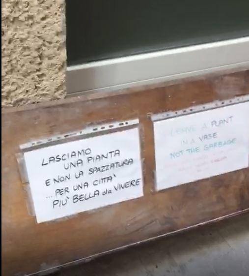 IN VIA DEL LABIRINTO FRA PIANTE E SPAZZATURA