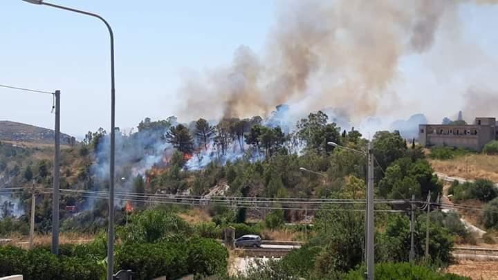 CASAPOUND NOTO: PRATICAMENTE DISTRUTTA LA PINETA DELL'EREMO DI SAN CORRADO